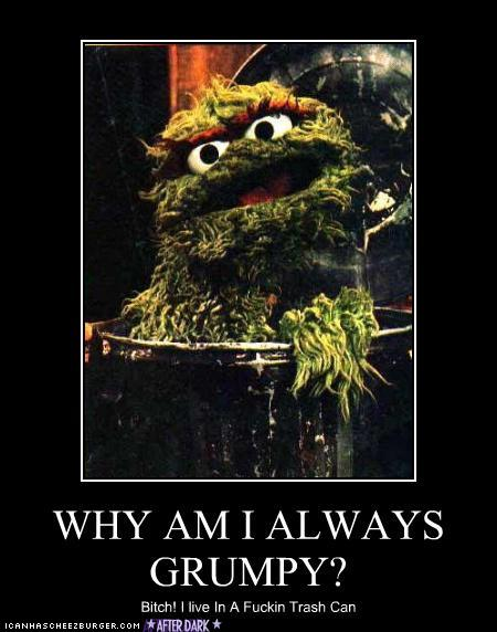 http://aspoonfulofsuga.files.wordpress.com/2012/12/funny-pictures-oscar-the-grouch-trash-can.jpg