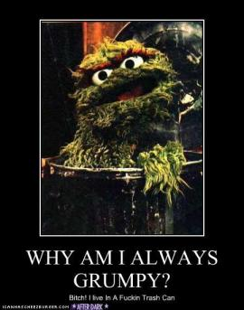 funny-pictures-oscar-the-grouch-trash-can