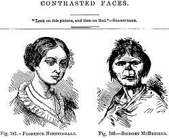 irish apes