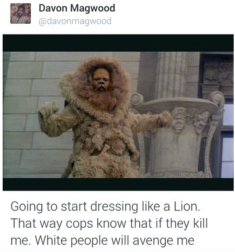 dress-like-a-lion-white-people-will-avenge-me
